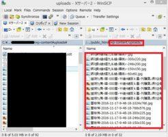 FTPサーバー画像文字化け